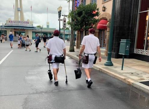 Disney Hollywood Studios Street Beautification